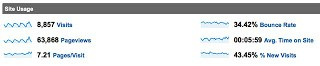 Google Analytics Site Usage